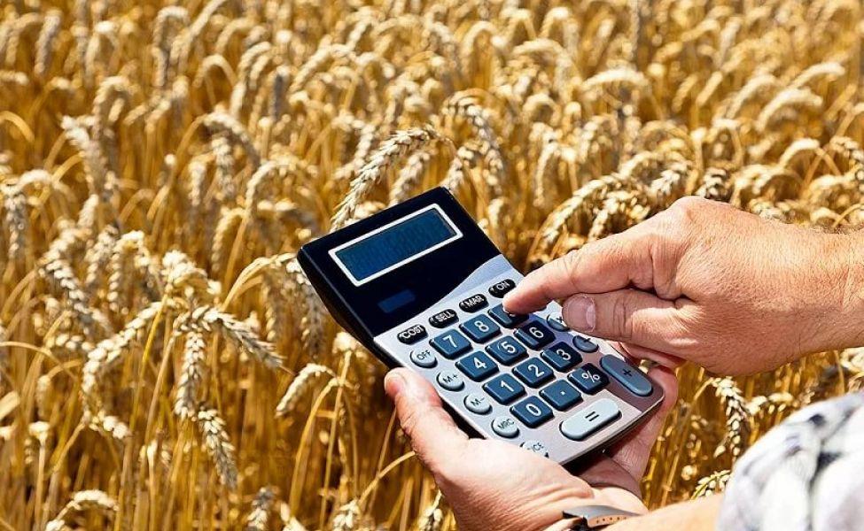 Прокуроры требуют вернуть в бюджет около 5 млрд тенге субсидий, выданных сельхозтоваропроизводителям